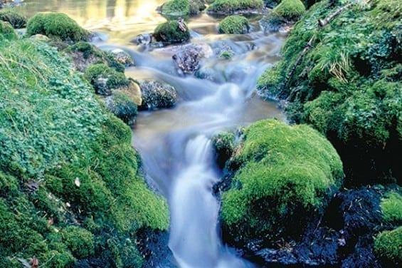 Gasteiner Thermalwasser - Gasteinertal